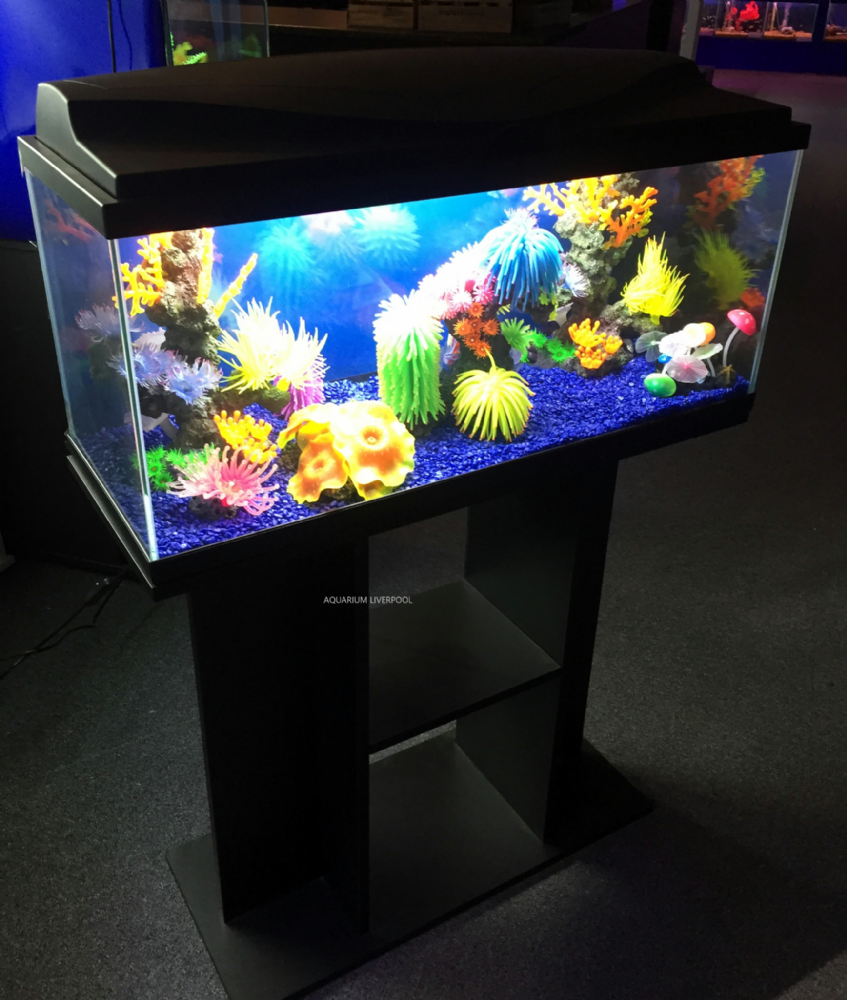 Ciano Aqua 80 LED Tropical Glass Aquarium & Stand  71L BLACK